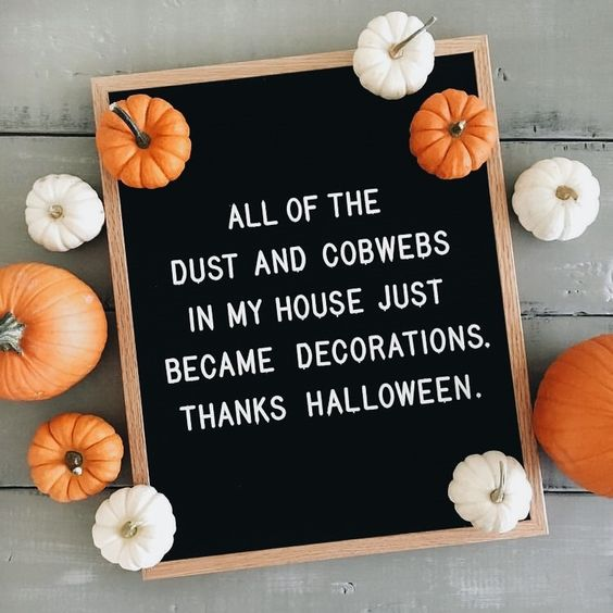 halloween dust cobwebs Fall Letter Board Quotes